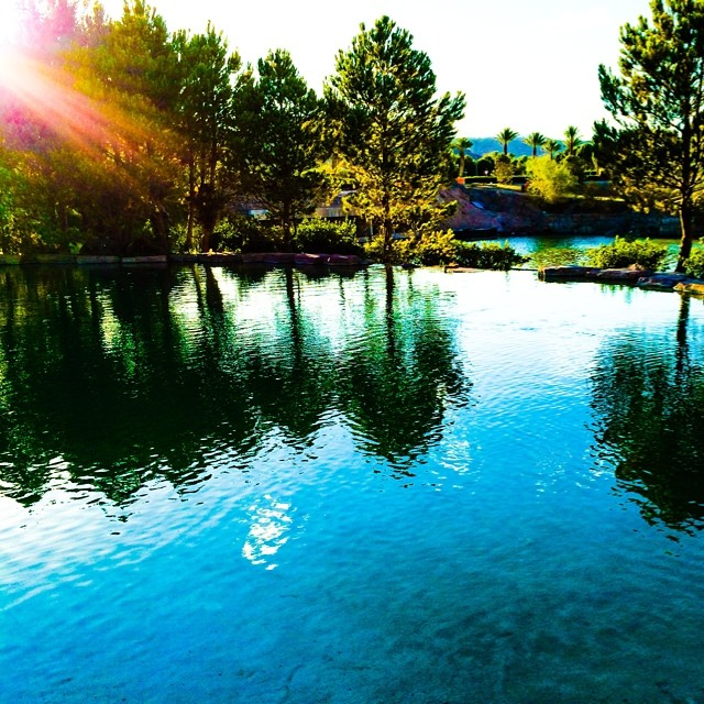 Be a #reflection of what you want to see in others. If you want #love, give love. If you want honesty, give #honesty. If you want respect, give #respect. You get in return what you give. #life #reflections #nature #sunlight #photography #allshots #lakelasvegas #lake #colorful #calm #peaceful
