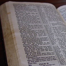 Cropped-Bible