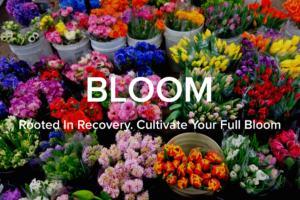 bloom club