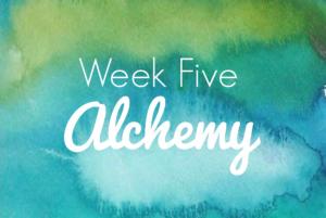 week 5